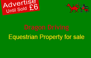 Dragon Driving Property for sale