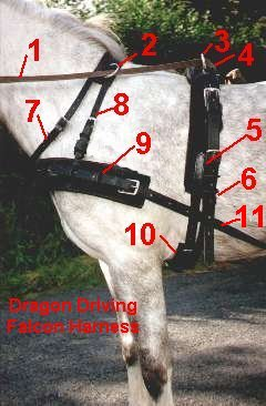 Collar Harness Parts