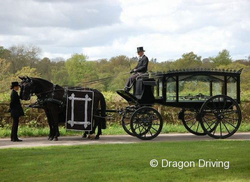 Hearse by Fairbourne Carriages